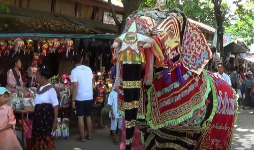 danse-elephants-15