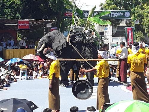 danse-elephants-05