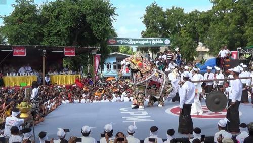 danse-elephants-06