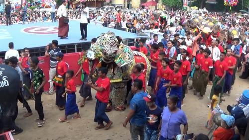 danse-elephants-08
